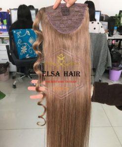 Ponytails hair elsa